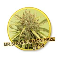 MrSugarLemonHaze-MrHide-ElCultivar-growshop