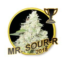 MrSourR-MrHide-ElCultivar-growshop