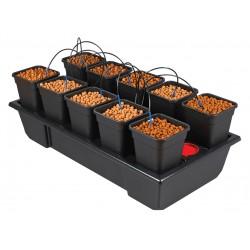 Sistema de cultivo Wilma 10. 6.5L El Cultivar growshop