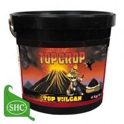 TopVulcanTopCrop-ElCultivarGrowshop.jpg