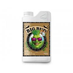 BigBudCocoAdvanced-ElCultivarGrowshop.jpg